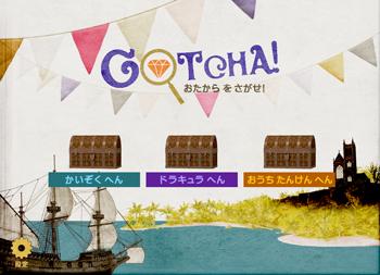 enter GOTCHA page